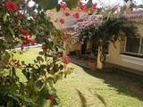 Виллы Испании Marbella лот v1160.14 фото 01